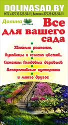Саженцы декоративных и плодовых культур. Могилев. Гарантия.